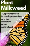 2016 Earth Day - Plant Milkweed by Leonard H. Axe Library