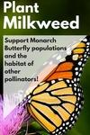 Earth Day 2016 Plant Milkweed