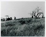 "F08_E03_01 Gordon Parks directs Big Mable (Carole Lamond) by ""The Learning Tree"" tree on location in Bourbon and Linn counties, Kansas by Unknown"