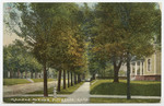 Kansas Avenue, Pittsburg, Kansas by S. H. Kress & Company