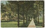 Scene on Euclid Avenue, Pittsburg, Kansas