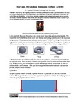 Maryam Mirzakhani Riemann Surface Activity by Cynthia J. Huffman Ph.D.
