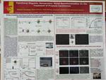 Functional Magnetic Nanophrobes: Novel Nanotheranostics for the Treatment of Prostate Carcinomas