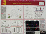 Inhibitor-Induced Combination Therapy of K-RAS Driven NSCLC